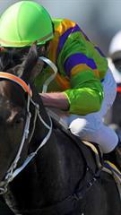 Prestižinės žirgų lenktynės