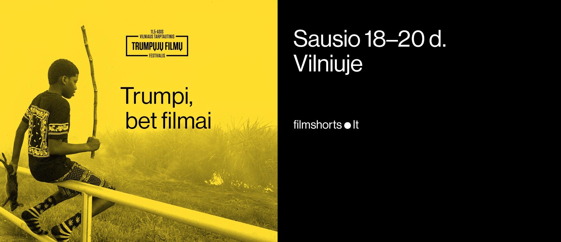 11,5-asis Vilniaus tarptautinis trumpųjų filmų festivalis (Skalvija)