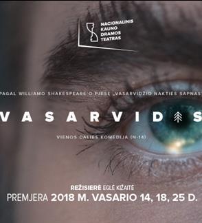 VASARVIDIS (Directed by E.Kižaitė)